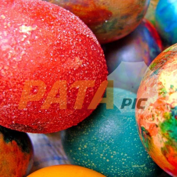 2009FREEeaster eggs02955www.patapic
