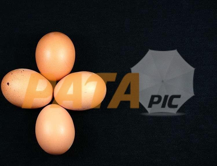EggsEasterDSCF3066www.patapic.com